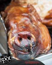 pig out-6504