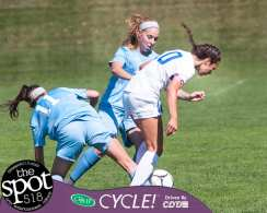 shaker soccer-4018