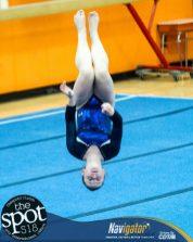 gymnastics-7556