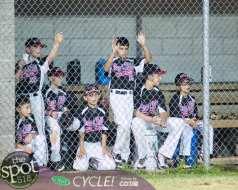 tuesday baseball-7683