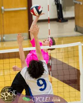 Col-shaker volleyball-5653