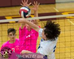Col-shaker volleyball-7041