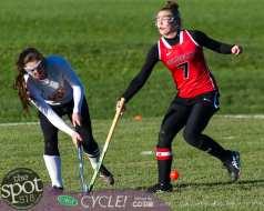 field hockey-9548