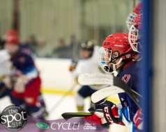 beth hockey-0410