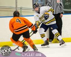 beth hockey-1134