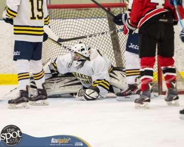 S-C AA hockey-8945