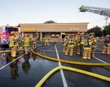 shaker pine fire web-6369