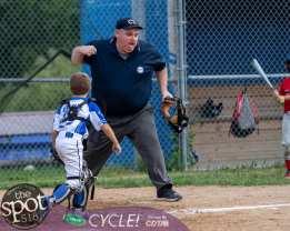 NC little league-4273