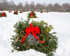 wreaths-6523