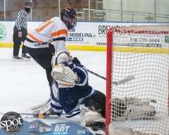 hockey and hoops web-3462