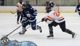 hockey and hoops web-3876