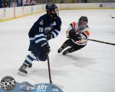 hockey and hoops web-3891