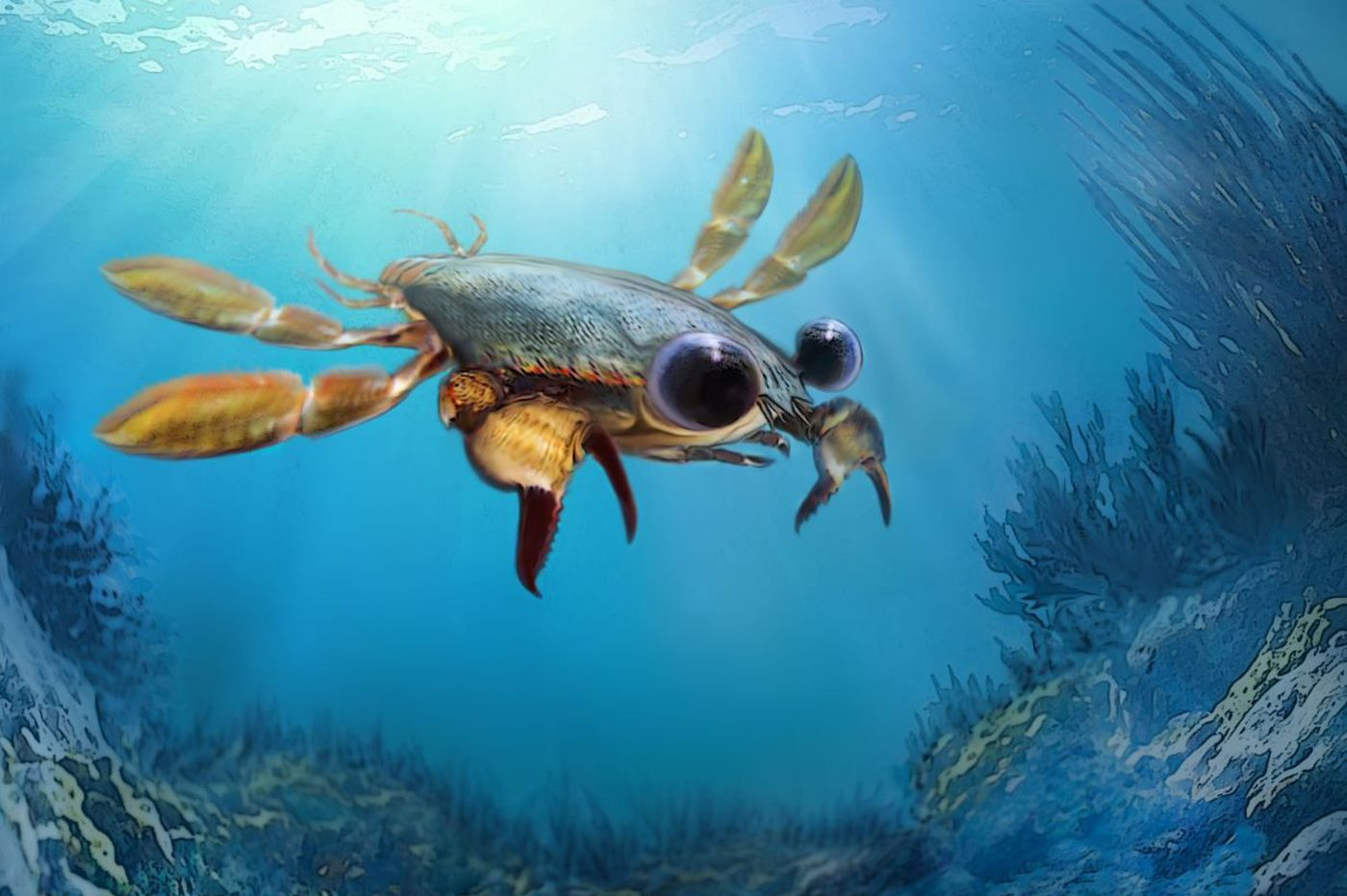 Yale paleontologist discovers new 95 million-year-old crab species