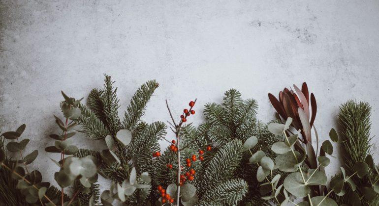 Chinese youtube videos on the story of Christmas jesus' birth nativity story 聖誕節來源影片
