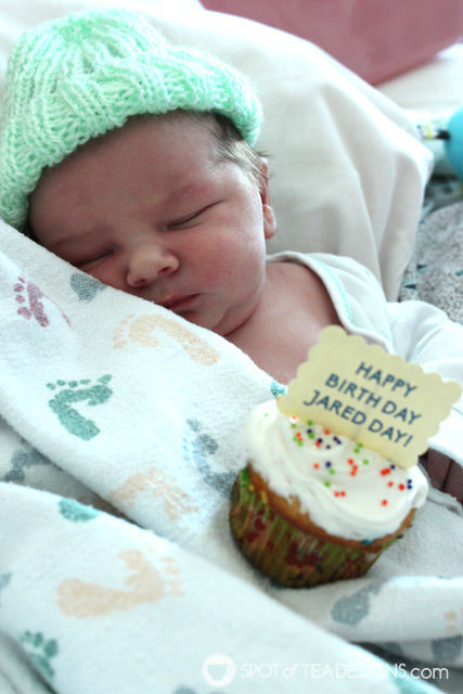 Bring cupcakes to the hospital when a new baby is born and celebrate their birth day! | spotofteadesigns.com