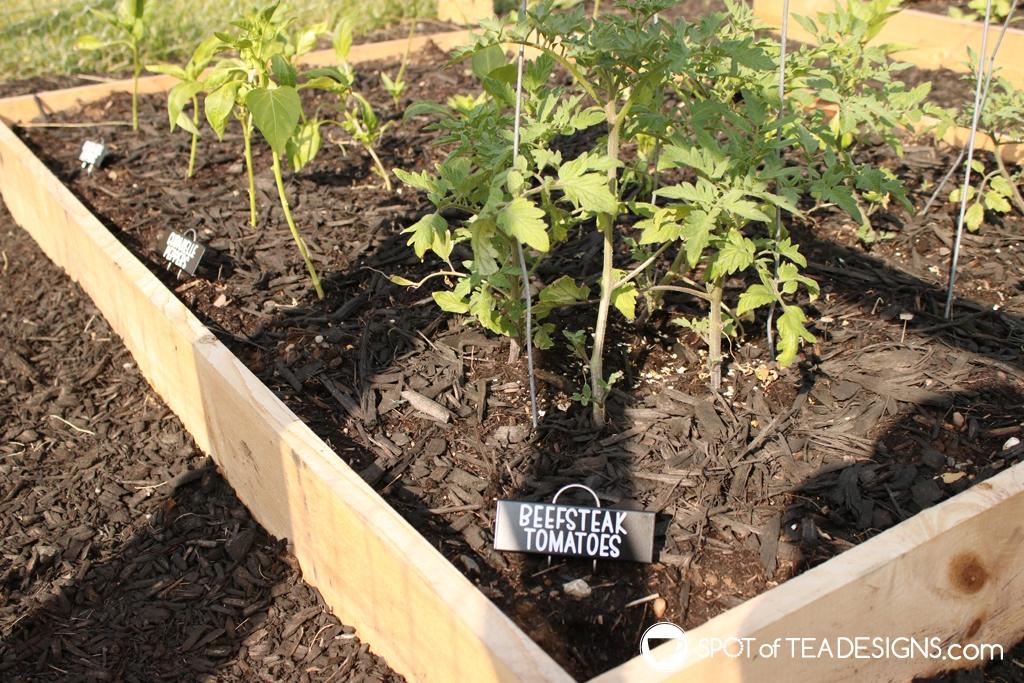 DIY Garden Markers - how we realized our backyard vegetable garden | spotofteadesigns.com