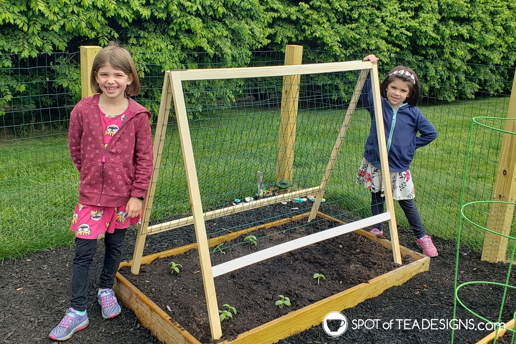 Our backyard vegetable garden part 3 - building the gate and a cucumber trellis | spotofteadesigns.com