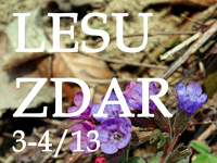 Lesu Zdar