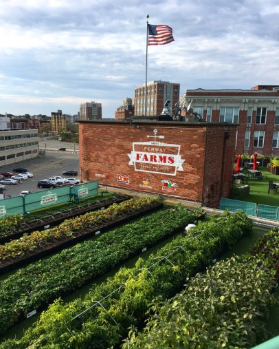 Travel Guide: Boston on a Budget - Fenway Park Tour - www.spousesproutsandme.com