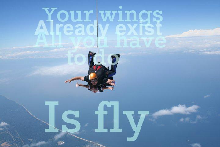 Flying_Wings