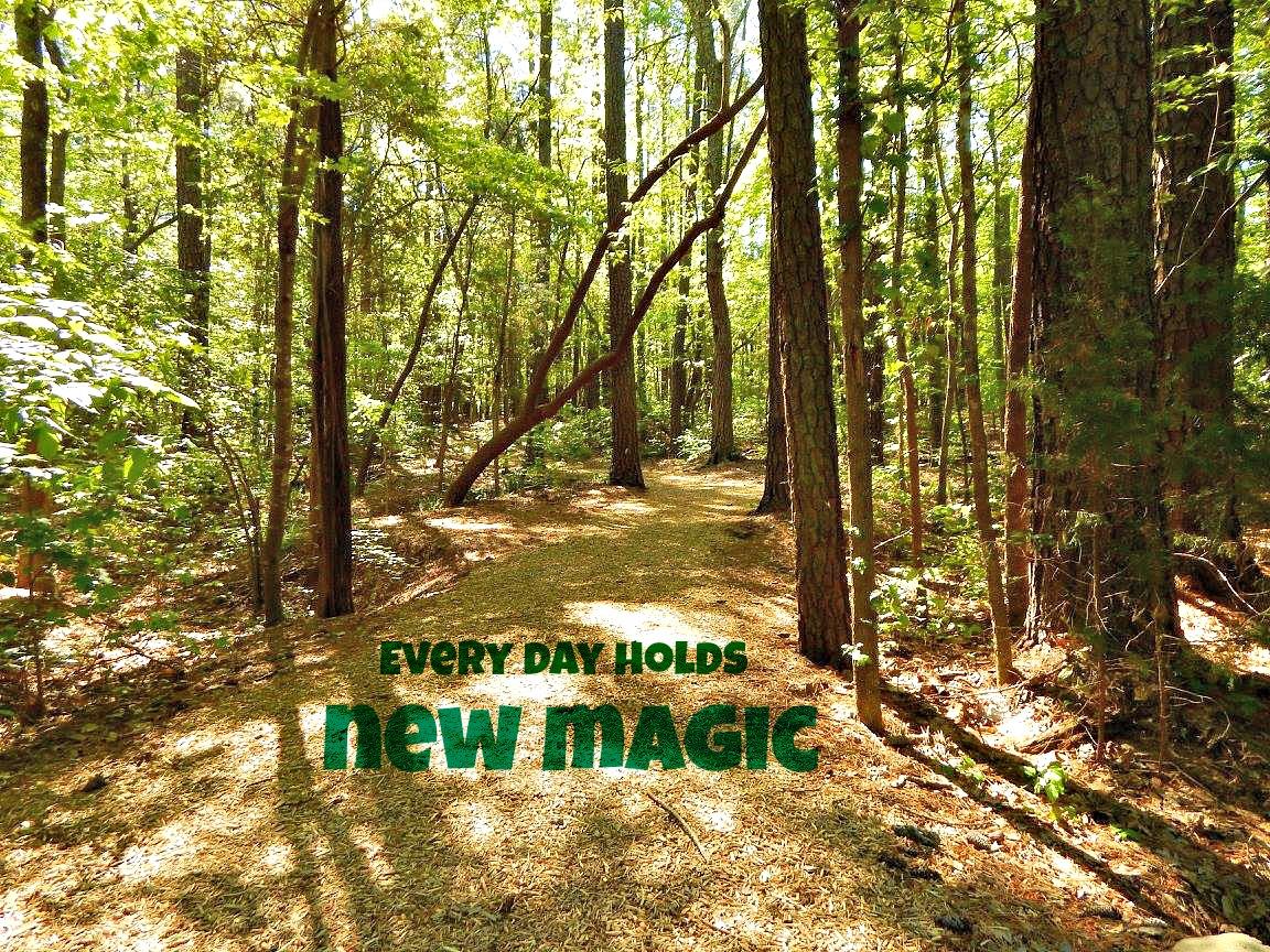 New_Magic