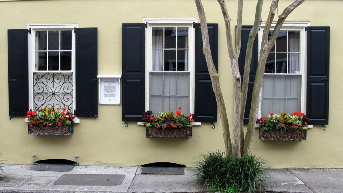 Can I Paint Exterior Vinyl Shutters? - Learn the Steps on Sprayer Guide