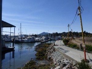 Marina Boardwalk Damage 2 9-20-14