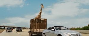 Ako ste jedan od moralista koji se protivi okrutnostima nad životinjama u filmu, onda vas čeka samo jedna scena koja graniči s humorom