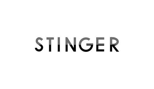 WordPressテーマ「STINGER8」を使ってみた感想とレビュー!