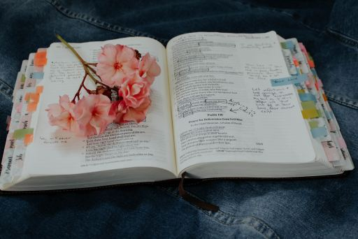 An opened study bible with pink flowers placed on one side.