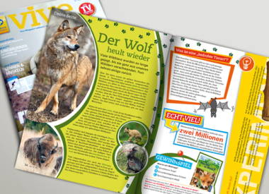 Editorial Design, Kindermagazin