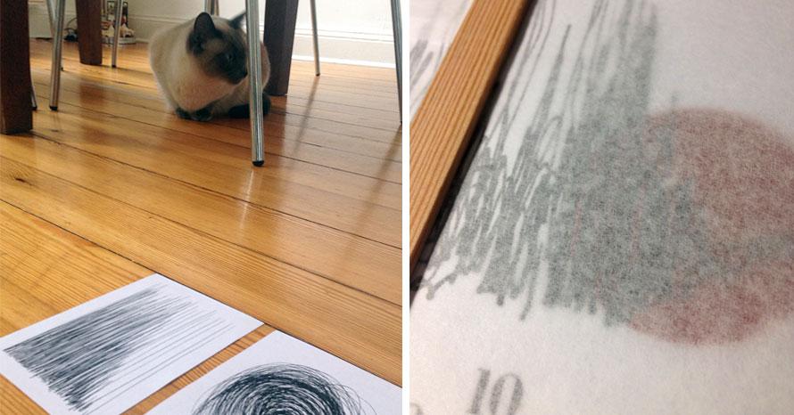 Lineart Zeichnungen, Siamkatze, Katze, siamesische katze