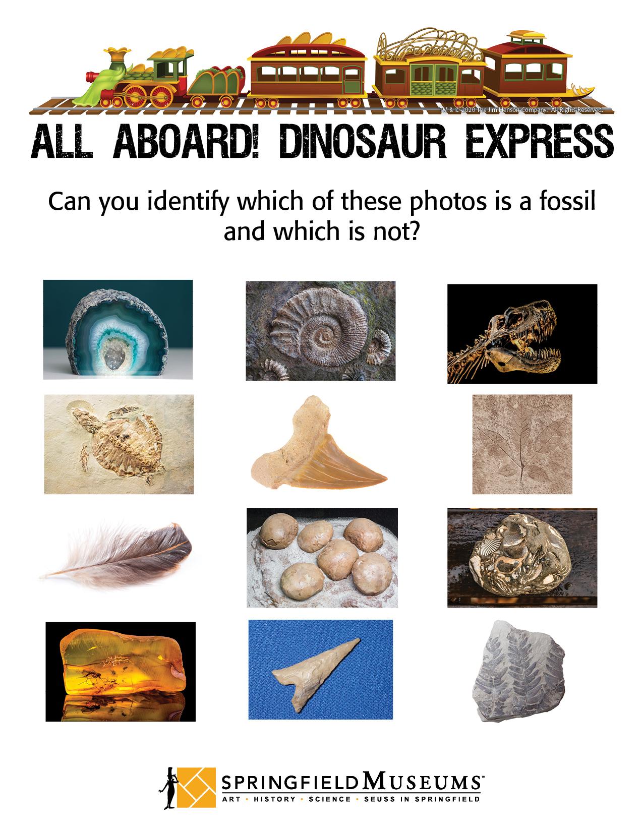 All Aboard Dinosaur Express