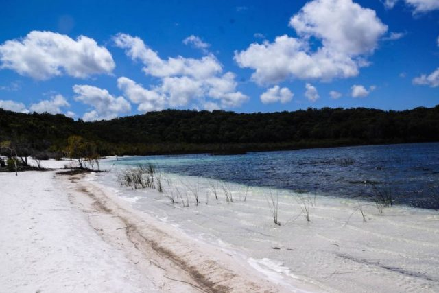 fraser island on foot a pied (7 of 15)