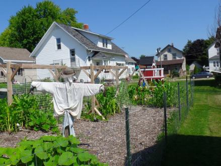 Staking, Caging, and Trellising