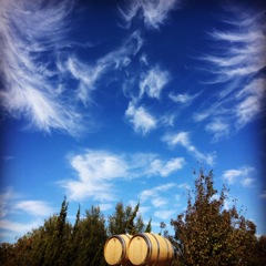 Behrens Family Winery - Clouds and barrels