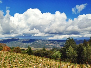 Behrens Family Winery - Fall Clouds