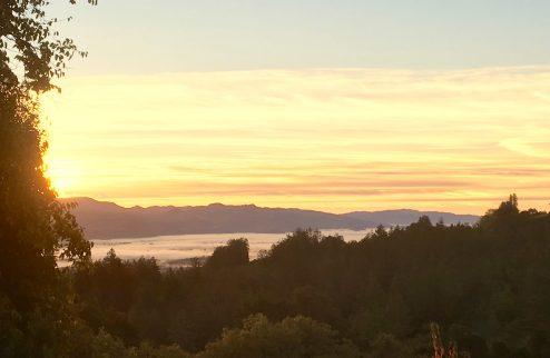 Eeden Vineyards Sunset