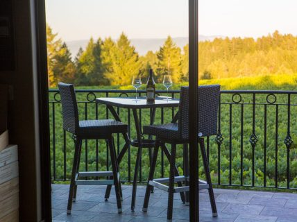 Schweiger Winery - Wine with view