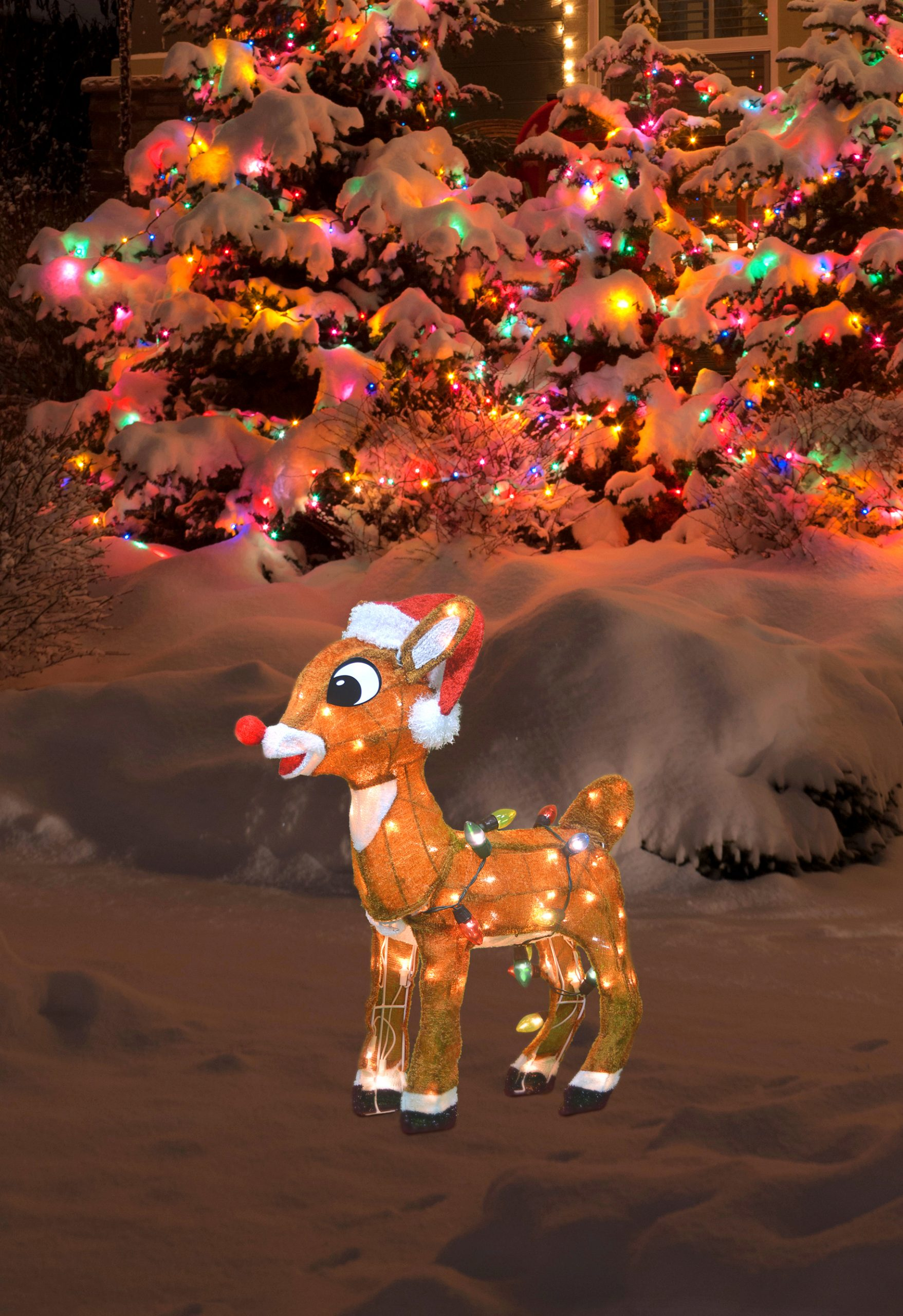 Rudolph Decoration