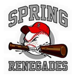 Spring Youth Baseball