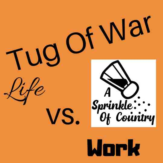 Work Life Balance: A Tug of War