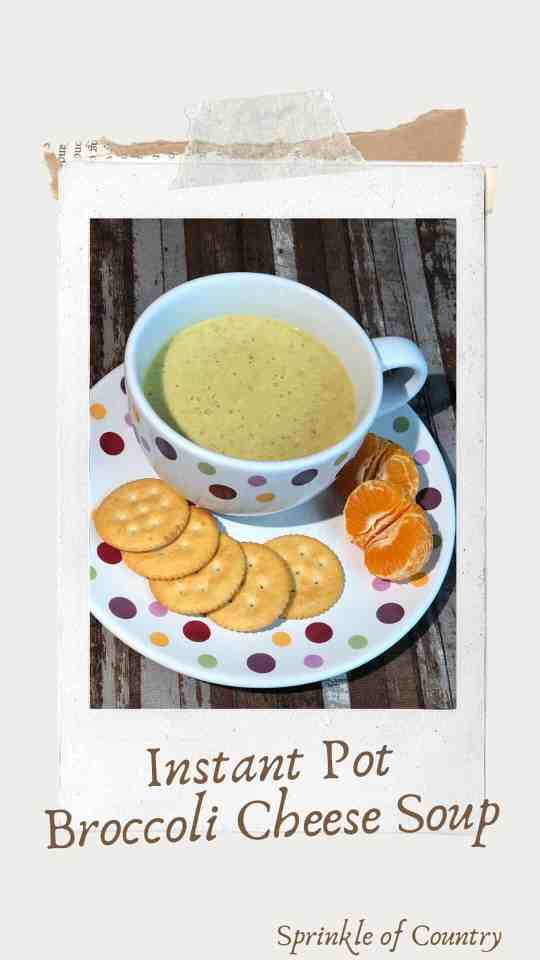 Pin image for broccoli cheese soup - Sprinkle of Country