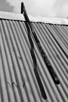 011_Suriname_2013_017_Roer