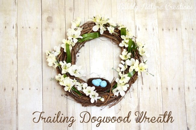 DIY Trailing Dogwood Wreath {Pottery Barn Knock-off