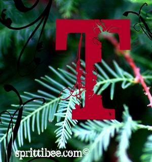 T-edit-s
