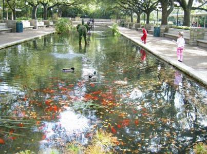 Field Trip Foto Friday: Houston Zoo