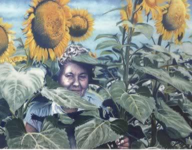 alice-in-sunflowers