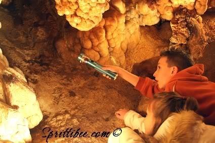 Field Trip Foto Friday: Meramec Caverns
