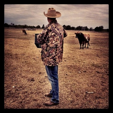 Cows and Cowboys #Texas #country